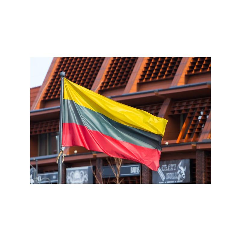 Lietuvos vėliava 150 x 250 cm