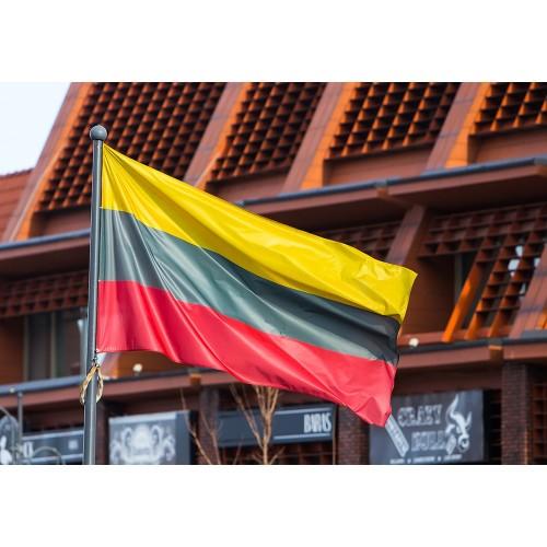 Lietuvos trispalvė vėliava (su raišteliais), 100 x 170 cm